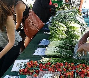 a long market table full of vegetables with a consumer handing money to a farmer
